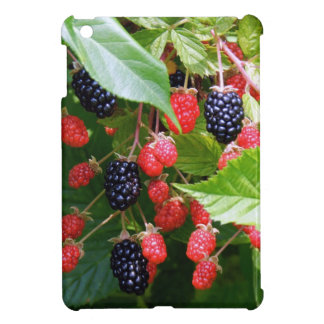Blackberry Patch Case For The iPad Mini