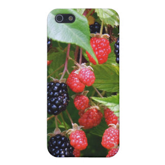 Blackberry Patch Covers For iPhone 5