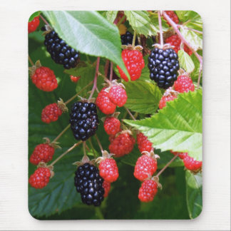 Blackberry Patch Mouse Pad