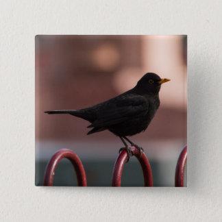 Blackbird 2 Inch Square Button