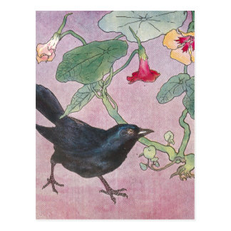 Blackbird and Nasturtiums Postcard