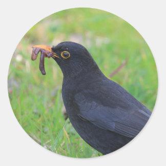 Blackbird Classic Round Sticker