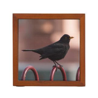 Blackbird Desk Organizer