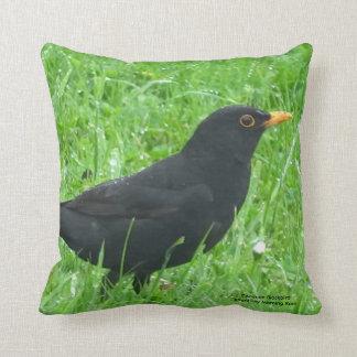 Blackbird image for Throw Cushion