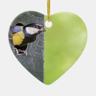 Blackbird parent in hole of nest box ceramic heart ornament