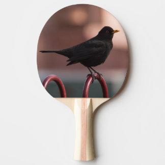 Blackbird Ping Pong Paddle