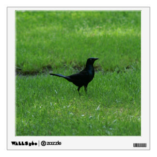 Blackbird, Wall Decal. Wall Sticker