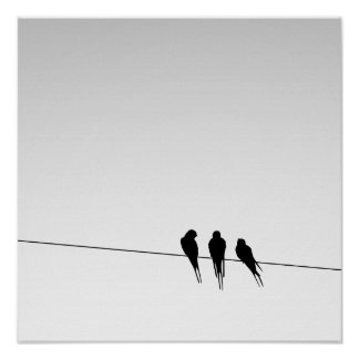 Blackbirds Silhouette on Wire on Gradient Sky Poster