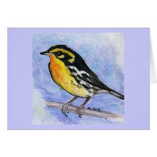 Blackburnian Warbler Card