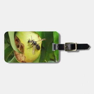 Blackjack Bee on Pear Luggage Tag
