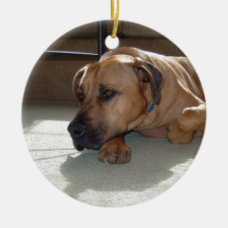 blackmouth cur laying ceramic ornament
