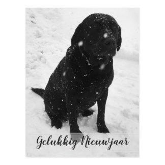 Blacks blank photograph happy new year Christmas Postcard