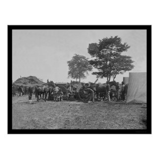 Blacksmith Shoeing Horses at Antietam 1862 Poster