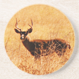 Blacktail Buck Coaster