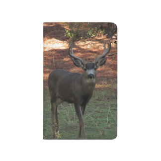 Blacktail Buck Pocket Journal