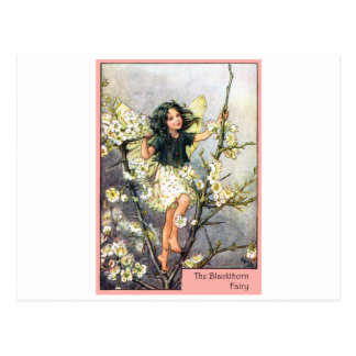 Blackthorn Fairy Postcard