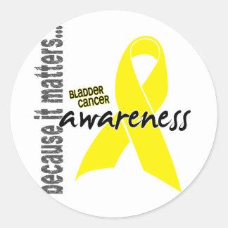 Bladder Cancer Awareness Round Sticker