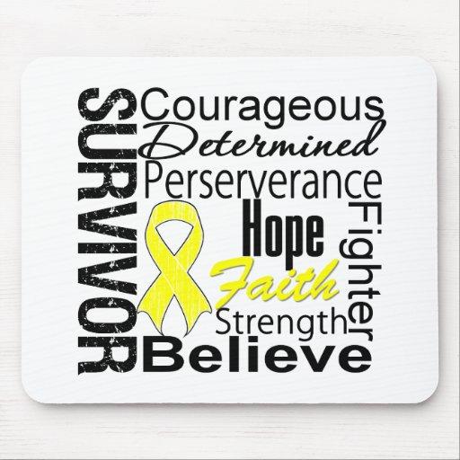 Bladder Cancer Survivor Collage Mousepads