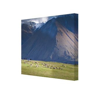 Blak Mountain Canvas Print