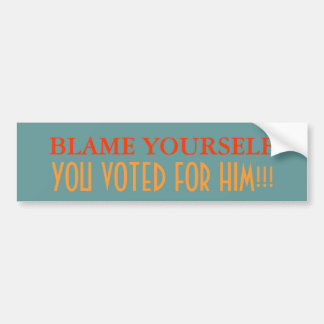 Blame Yourself, you voted for him Bumper Sticker