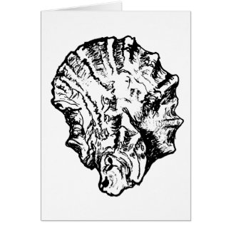 Blank Black and White Oyster Shell Card