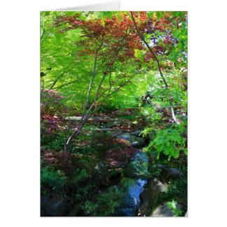 Blank Card, Botanical Garden Card