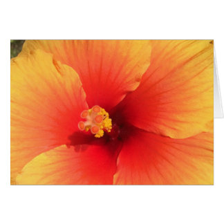 Blank Card Yellow Floral Photo