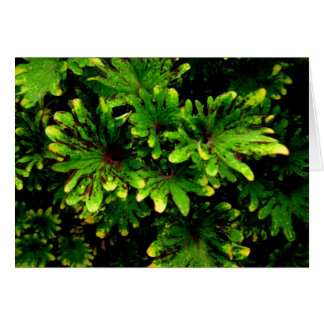 Blank-Green and Yellow Tipped Leaves Note Card
