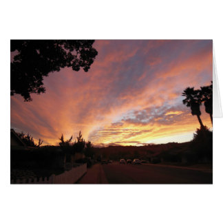 Blank Greeting Card: Bright Sunset Framed by Trees Card