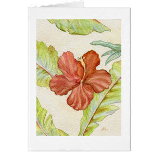 Blank Hibiscus Card