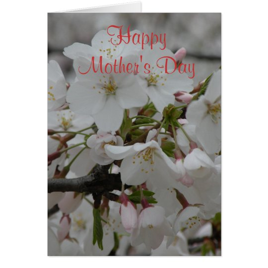 Blank Inside Happy Mother's Day Card