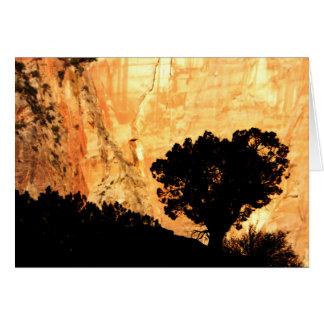 Blank Inside, Solitary Tree Card