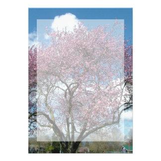 blank invitation, cherry blossoming tree personalized invitations