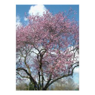 blank invitation, cherry blossoming tree invitation