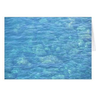 Blank Note Card--Tide Pool Card