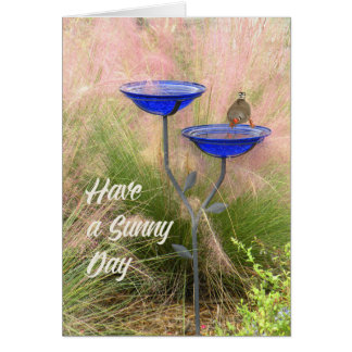 Blank Note Card with Finch at Bird Bath