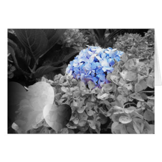 Blank Notecard Blue Flowers Black and White Design