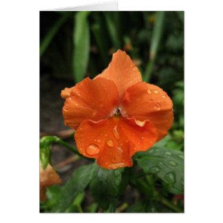 Blank_Orange Raindrops Card