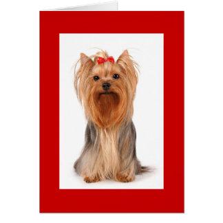 Blank Yorkshire Terrier Puppy Dog Notecard
