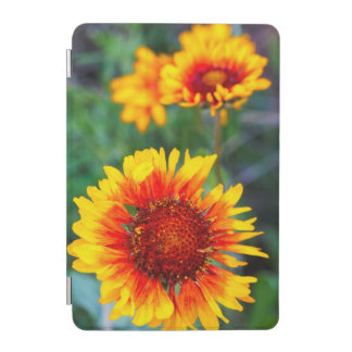 Blanket flower aka brown eyed susan in Glacier iPad Mini Cover