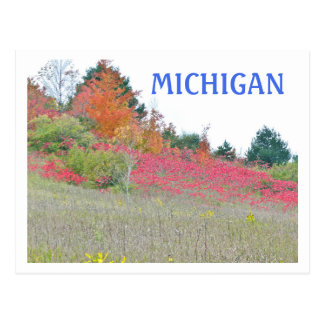 """""""BLANKET OF RED ON HILLSIDE"""" /MICHIGAN FALL COLOR POSTCARD"""