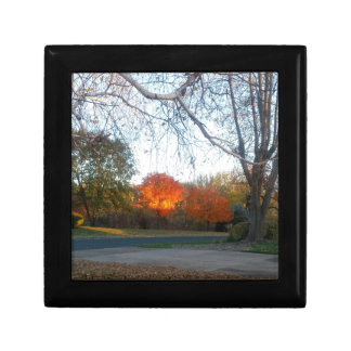 Blaze of Fall Gift Box