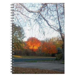 Blaze of Fall Notebooks