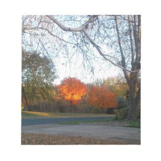 Blaze of Fall Notepad