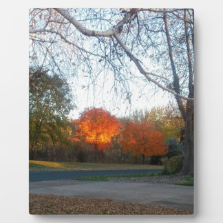 Blaze of Fall Plaque