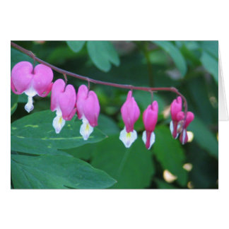 Bleeding Heart Card