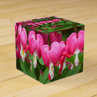 Bleeding Hearts Nature, Photo Favor Box