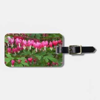 Bleeding Hearts Nature, Photo Luggage Tag