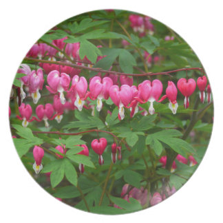 Bleeding Hearts Nature, Photo Plate