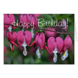 Bleeding hearts photo on birthday card